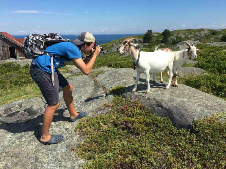 Sam-with-the-goats_web